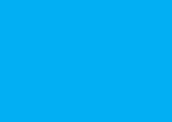 camp-florida-logo